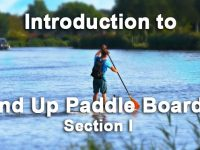 Paddle---Section-1